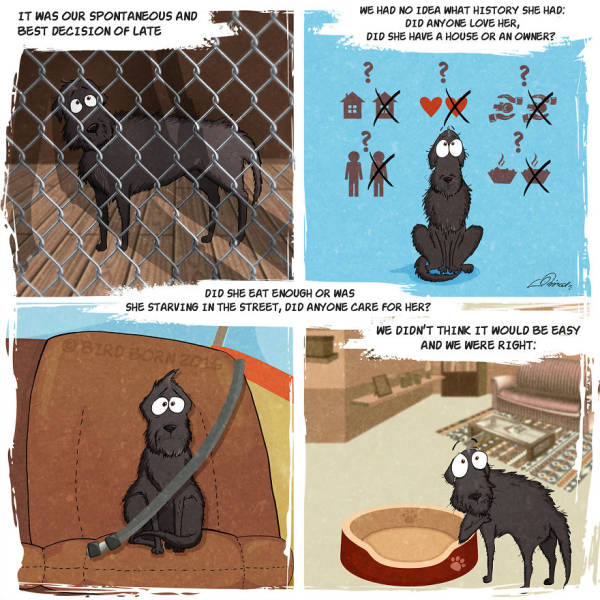 Amazing Comics Based On A True Story About An Adopted Dog