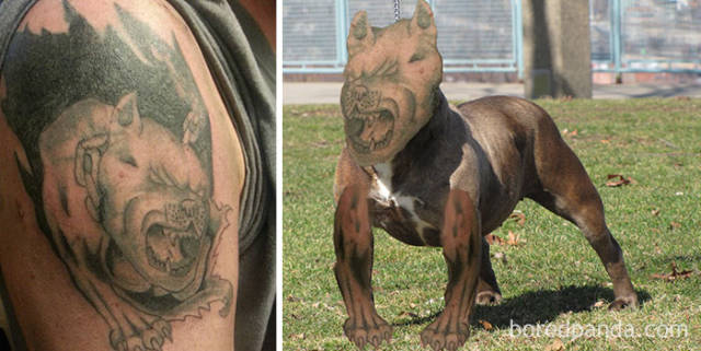 Cringe-Inducing Face Swaps With Tattoos That Show How Hard These Tattoos Failed