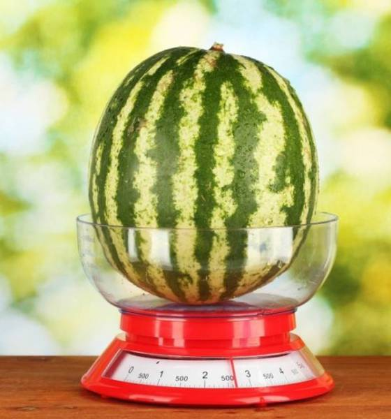Interesting Technique That Will Keep Your Watermelon Fresh For Six Months