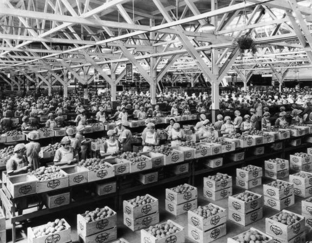 Here's What You Could Buy For A Dollar By The Year Starting From 1945