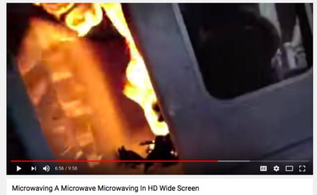 What Happens To The Things You're Not Supposed To Microwave