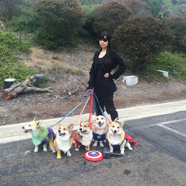 These Dog Owners Deserve A Medal