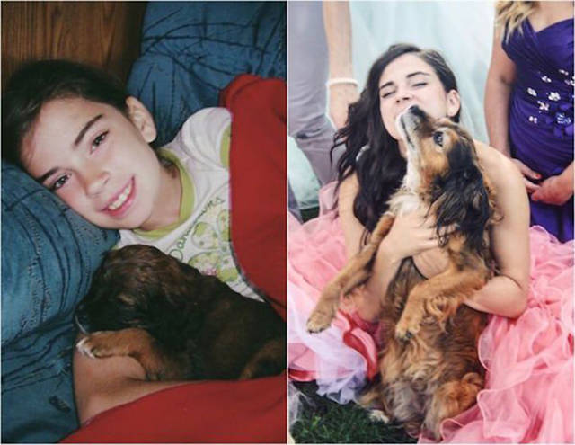 First And Last Pictures Of Pets That Will Hit You Right In The Feels