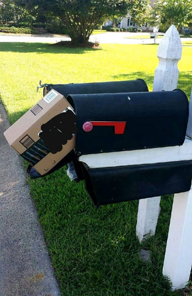 Creative Delivery Fails Make You Wanna Kill That Delivery Guy