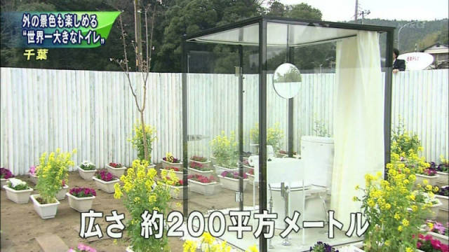 An Unusual Public Toilet In Japan