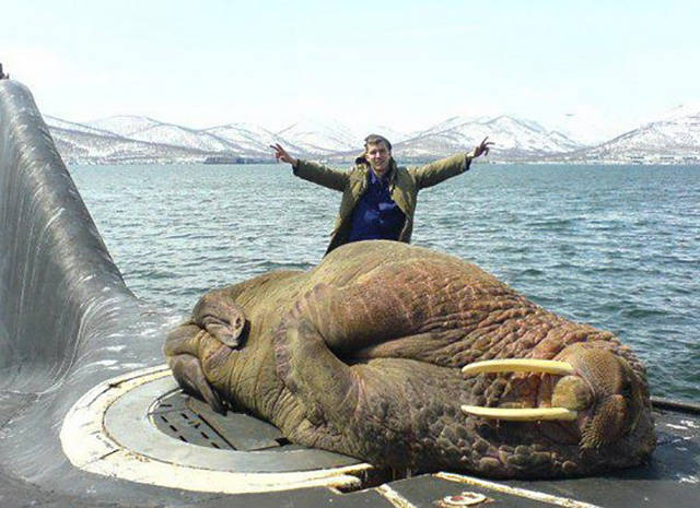 Crazy Huge Things Found Around The World