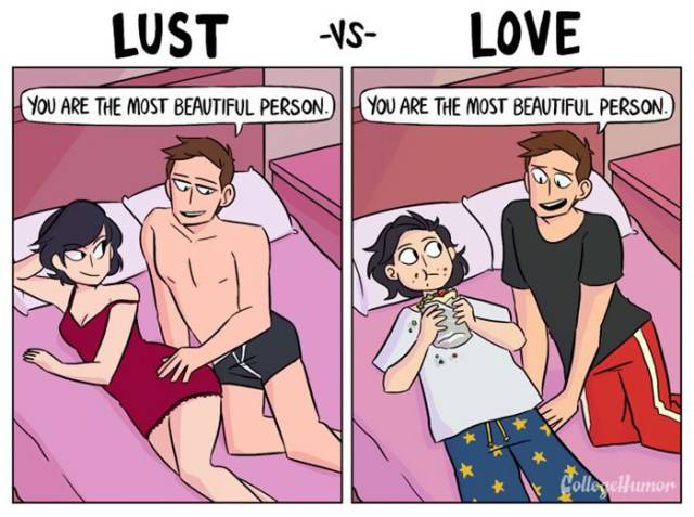 Funny Comics That Show Difference Between Lust And Love