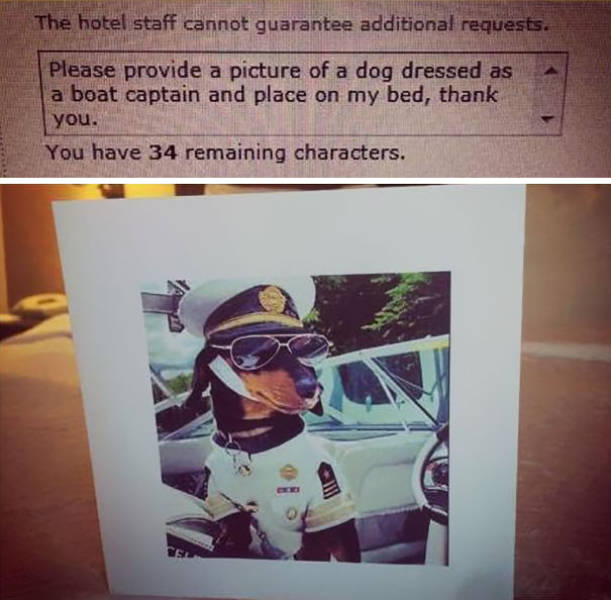 People Make Funny Room Requests And Hotel Staff Delivers