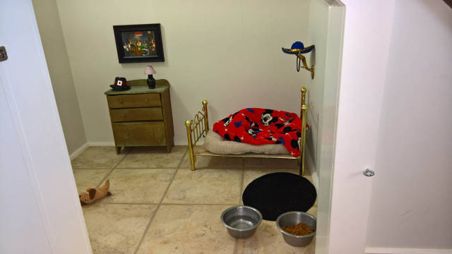 Woman Built A Cute Tiny Bedroom For Her Tiny Dog