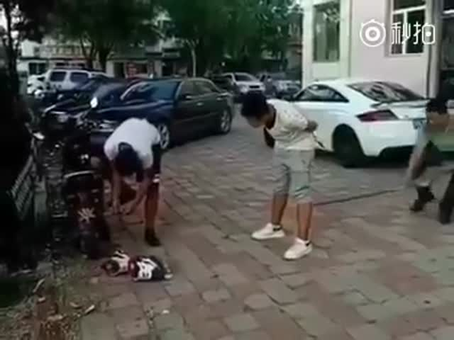 That's What Instant Karma Looks Like