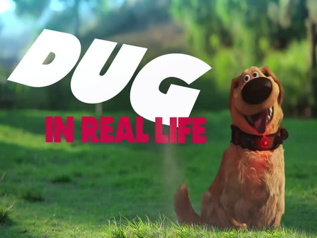 Cute Talking Dog Gag By Pixar Voice Actor Bob Peterson