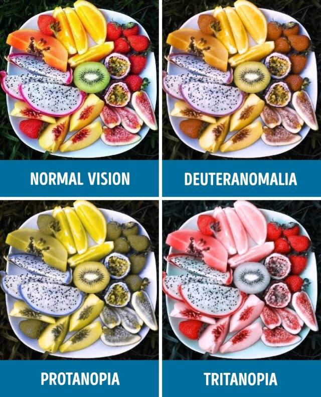 How People Who Have Different Types Of Color Blindness Perceive The World Around Them