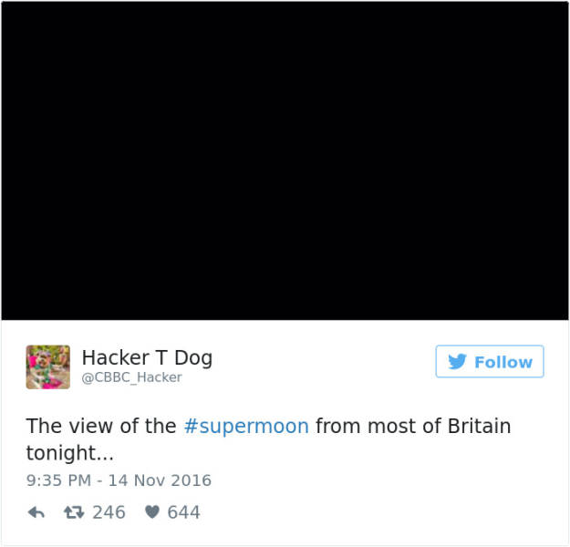 Supermoon Occurred Only Two Days Ago But The Internet Is Already Full With Supermoon Memes