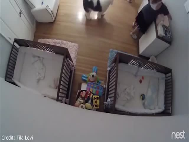 Fast Reaction Helps Him Save His Baby Brother