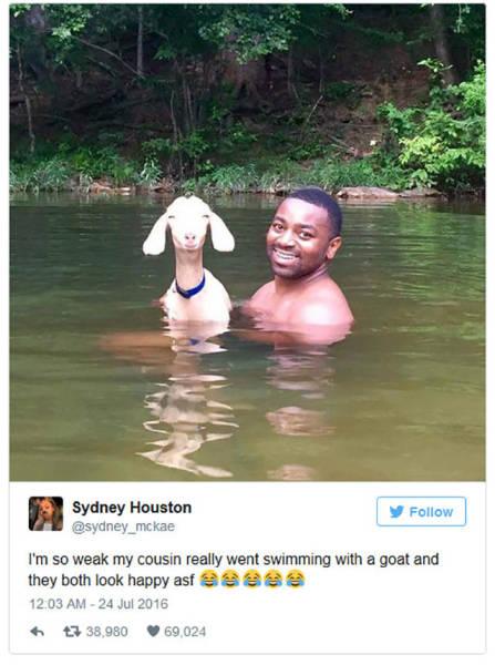 The Best Tweets Of 2016