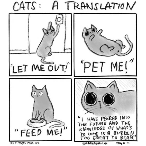 Funny Comics Of A 'Cat Lady' That Depicts What Life Really Is When You Have Cats
