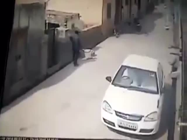 A Cow Decided To Randomly Bully A Man On The Street