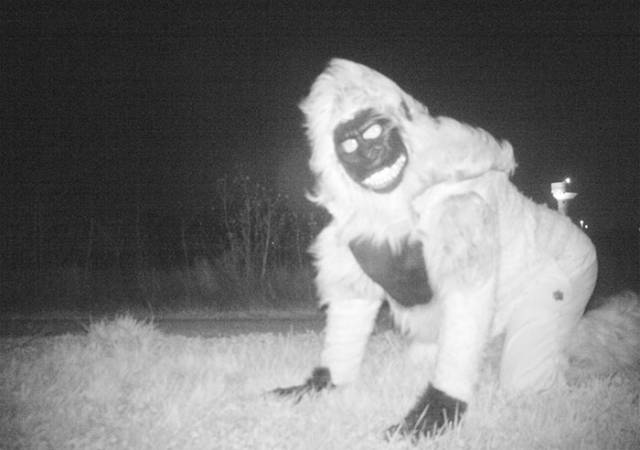When Police Set Up A Camera To Catch A Mountain Lion, They Really Didn't Expect To See This!