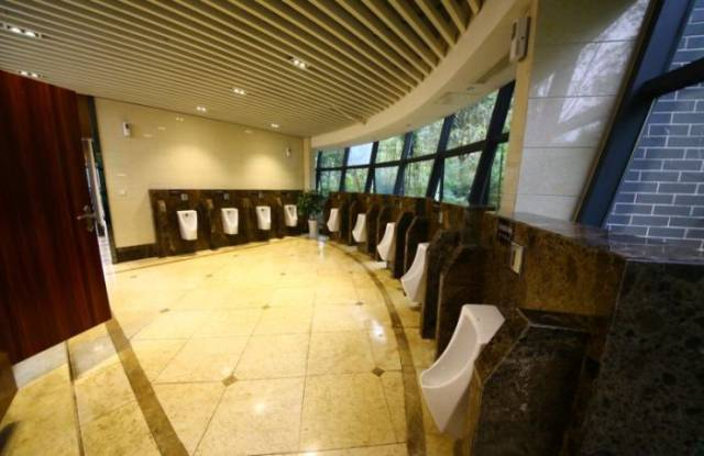 Here Is What China's Five Star Toilet Looks Like