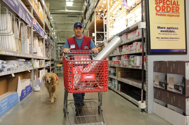 Disabled Veteran Gets Hired By A Hardware Store Together With His Service Dog