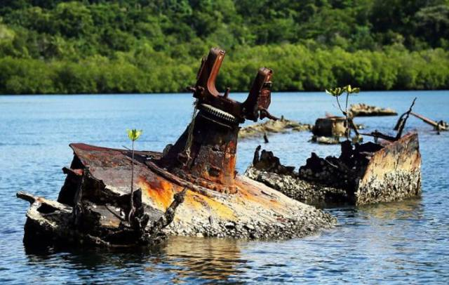 Abandoned Military Equipment Can Be Easily Found All Around The Pacific Islands