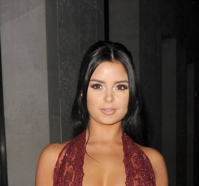 Demi Rose In A See-Through Dress Will Make Your Imagination Go Wild
