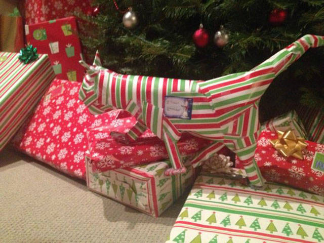Those Are Some… Unconventional Ways To Wrap Your Christmas Presents