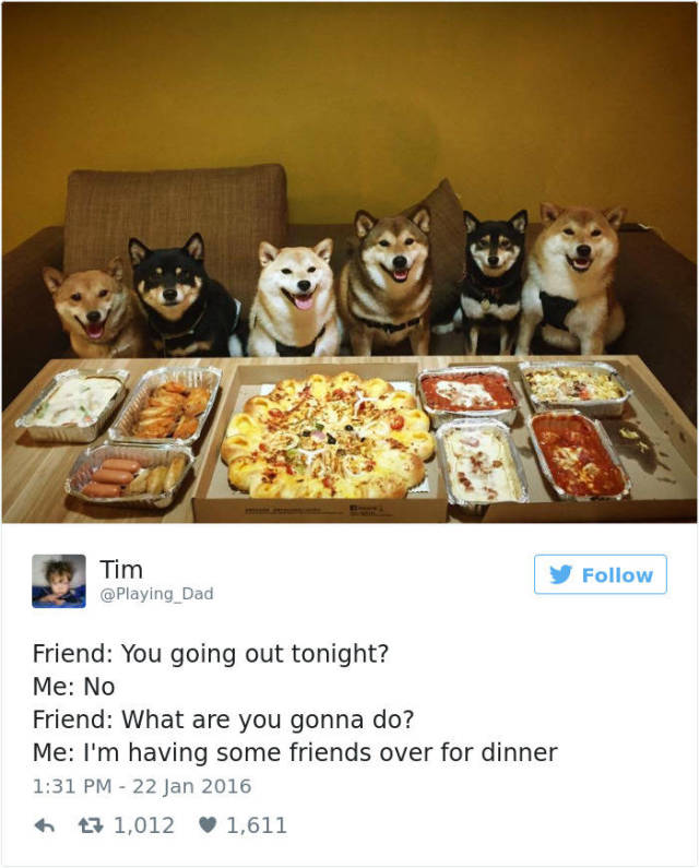 2016 Dog Tweets Are Hilarious And Cute