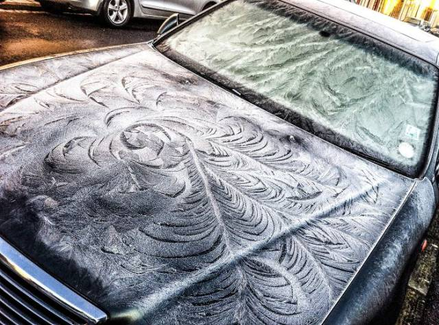 These Cars May Not Unfreeze Any Time Soon – But You Can't Deny Their Gorgeous Looks